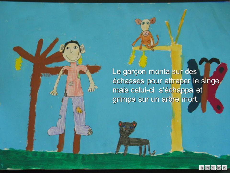 Ils traversèrent une forêt de bananiers et rencontrèrent un singe perché sur un arbre.