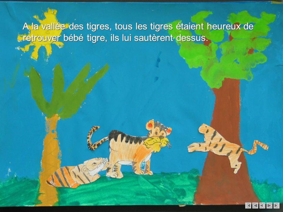 Ils s'approchèrent de lui et le bébé tigre reconnut sa maman. Elle essayait de le trouver, elle était très triste. Ils s'approchèrent de lui et le béb