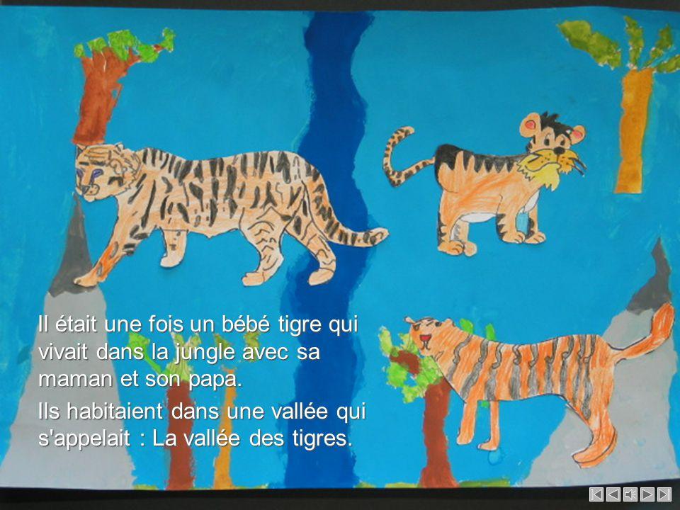 Il était une fois un bébé tigre qui vivait dans la jungle avec sa maman et son papa.