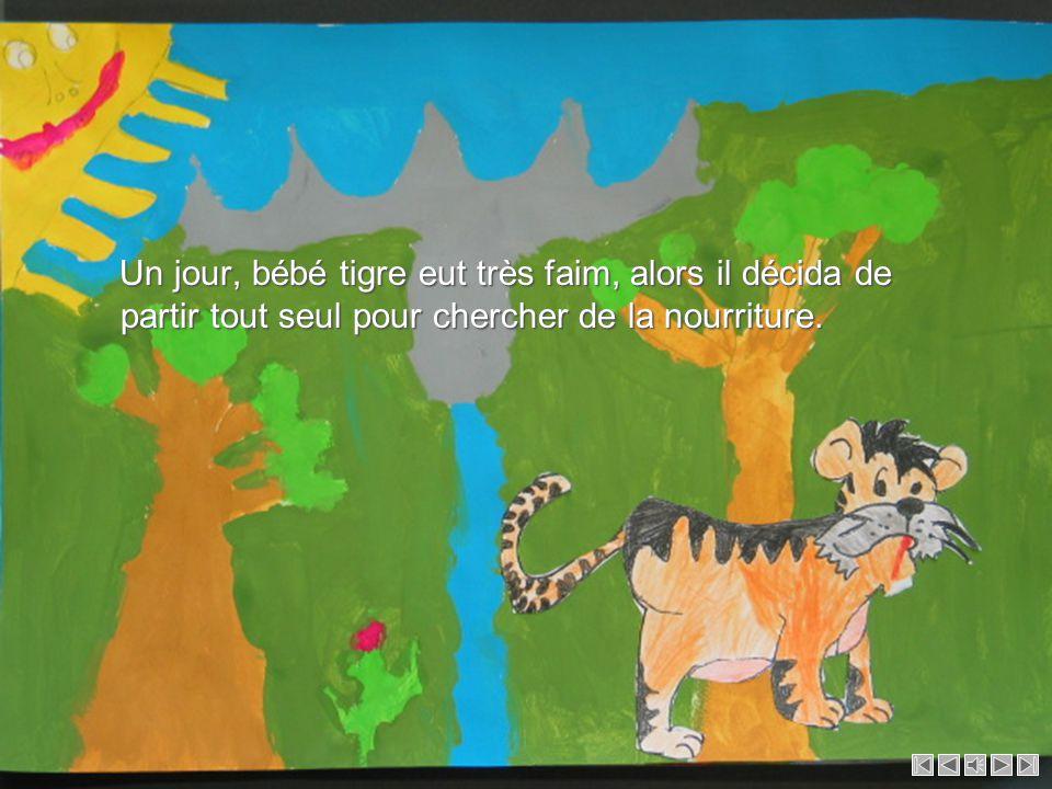 Un jour, bébé tigre eut très faim, alors il décida de partir tout seul pour chercher de la nourriture.