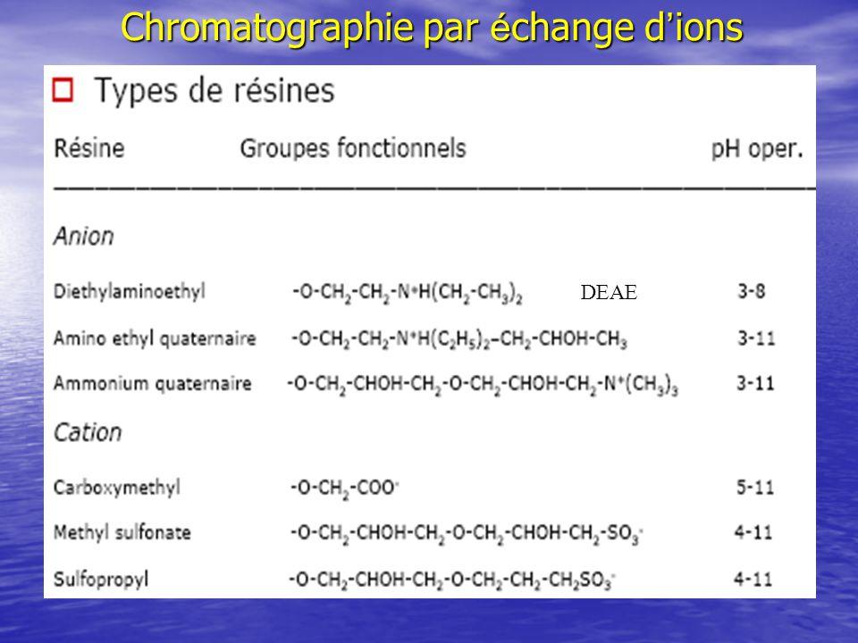 Chromatographie par é change d ions DEAE