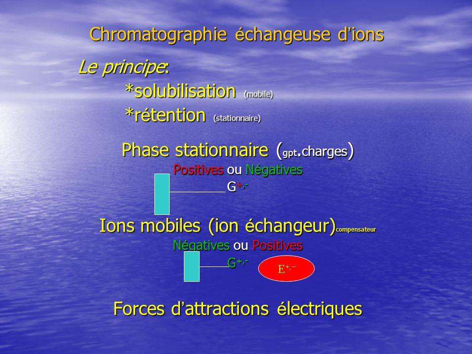 Chromatographie é changeuse d ions Le principe: *solubilisation (mobile) *r é tention (stationnaire) Phase stationnaire ( gpt.
