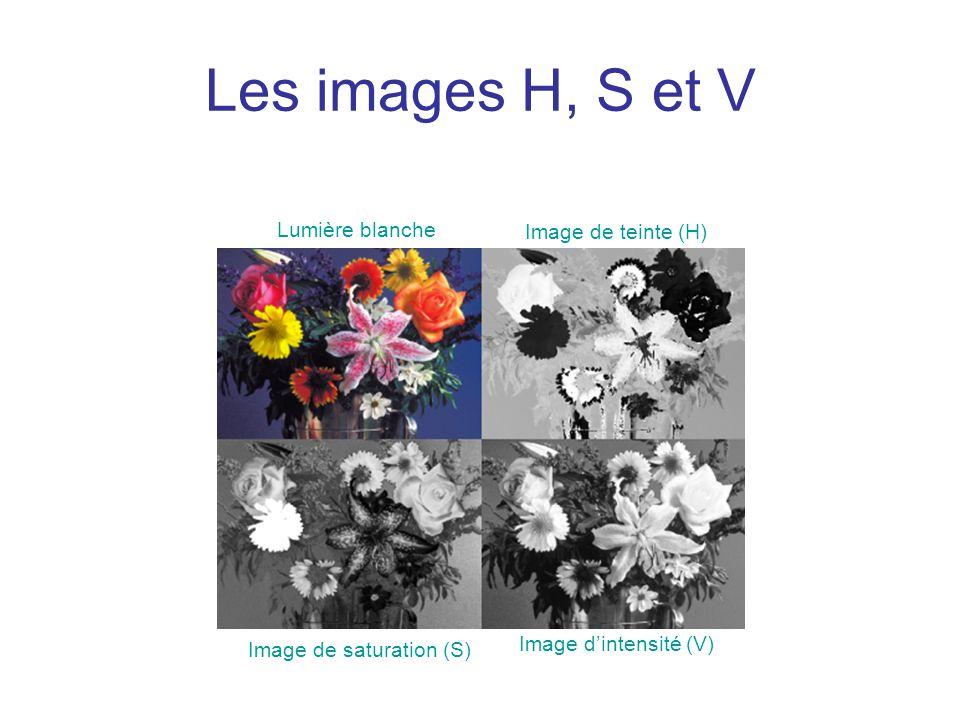 Les images H, S et V Lumière blanche Image de teinte (H) Image de saturation (S) Image dintensité (V)