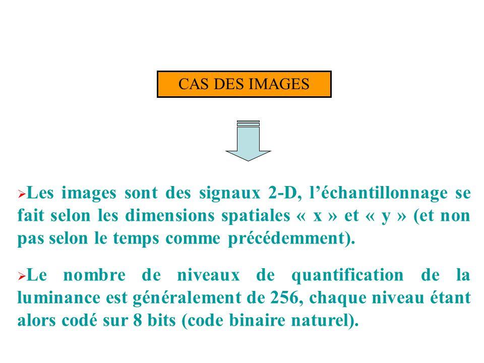 CAS DES IMAGES Les images sont des signaux 2-D, léchantillonnage se fait selon les dimensions spatiales « x » et « y » (et non pas selon le temps comm