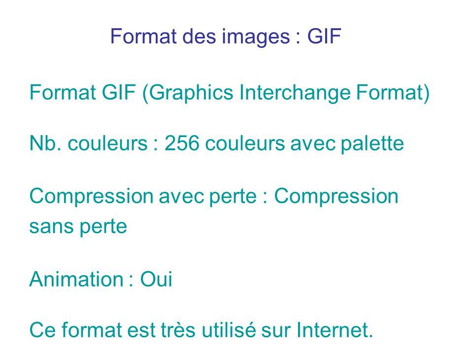 Format GIF (Graphics Interchange Format) Nb. couleurs : 256 couleurs avec palette Compression avec perte : Compression sans perte Animation : Oui Ce f