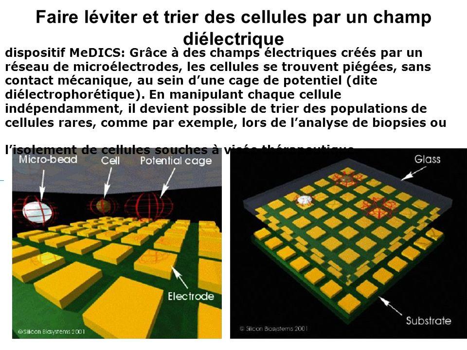 Faire léviter et trier des cellules par un champ diélectrique dispositif MeDICS: Grâce à des champs électriques créés par un réseau de microélectrodes, les cellules se trouvent piégées, sans contact mécanique, au sein dune cage de potentiel (dite diélectrophorétique).