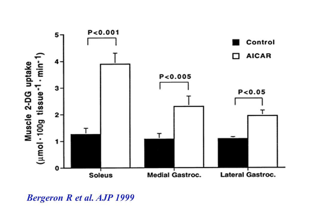 Insuline P IRS-1 PI-3 kinase Glucose Glucose Glut4 Ox Stockage AMPK + AICAR