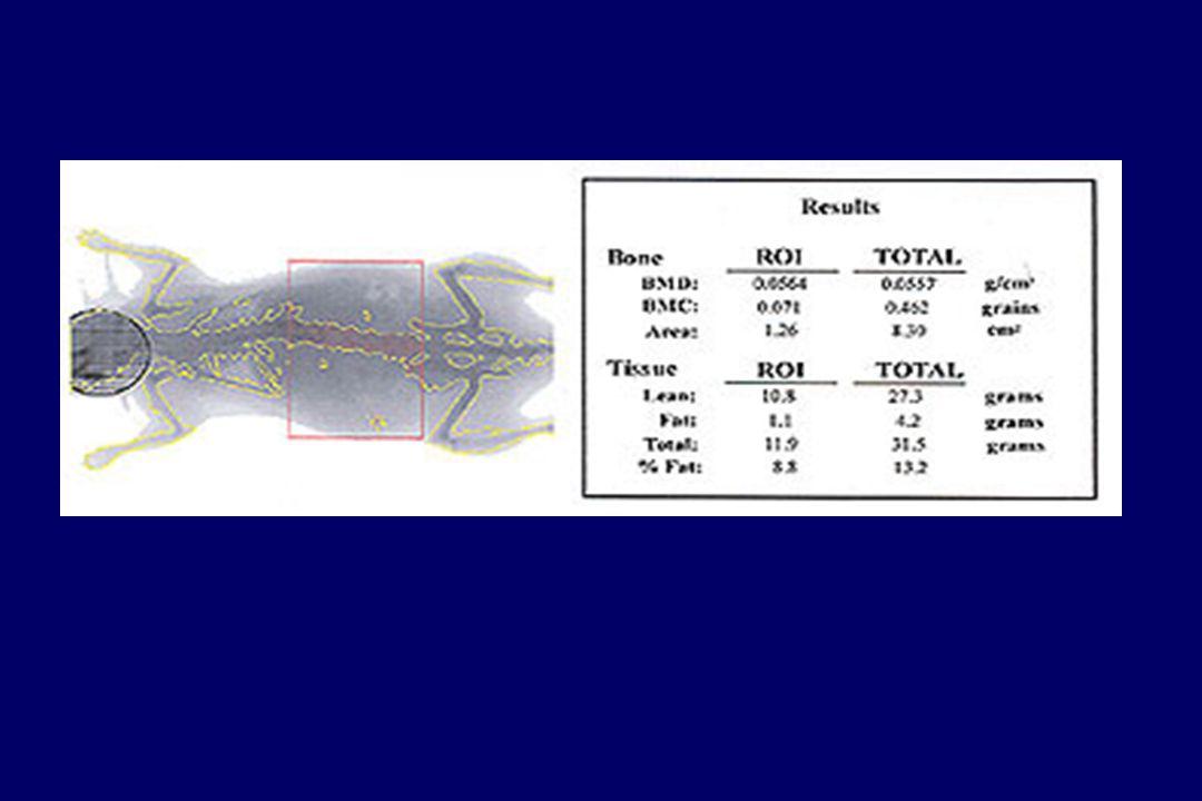 E9.5 dpc Control 1-/- 2-/- Alive no morphological differences E11.5 dpc Dead morphological aspect of E10.5 1 KO -> embryonic lethality around 10.5 dpc