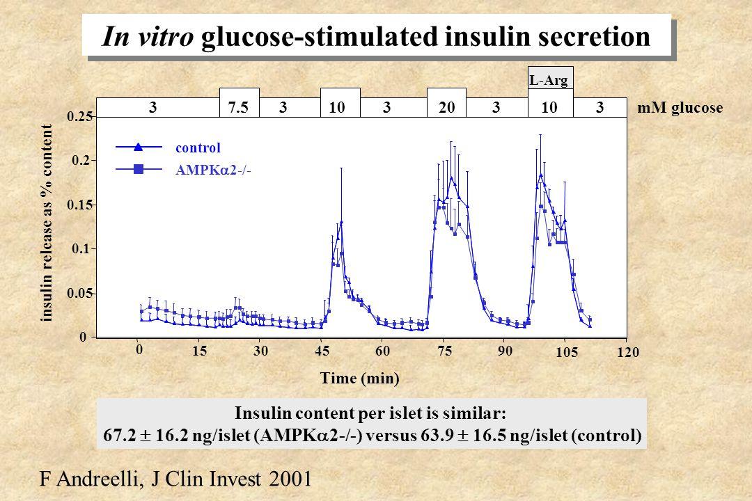 In vitro glucose transport in AMPK 2-/- muscle Deoxyglucose transport (µmol/g/h) 0 0,5 1 1,5 2 2,5 basalinsulin +/+ Soleus 0 0,5 1 1,5 EDL basalinsuli