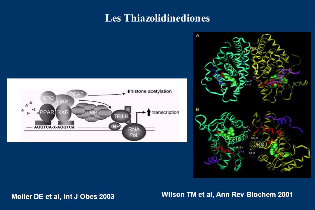 Institut Cochin, Paris Viollet Benoit Marc Foretz Myriam Bennoun Claire Cheret Axel Kahn Sophie Vaulont Copenhagen Muscle Research Center University o