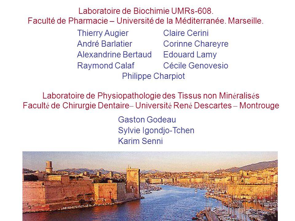 Laboratoire de Physiopathologie des Tissus non Min é ralis é s Facult é de Chirurgie Dentaire – Universit é Ren é Descartes – Montrouge Laboratoire de Biochimie UMRs-608.