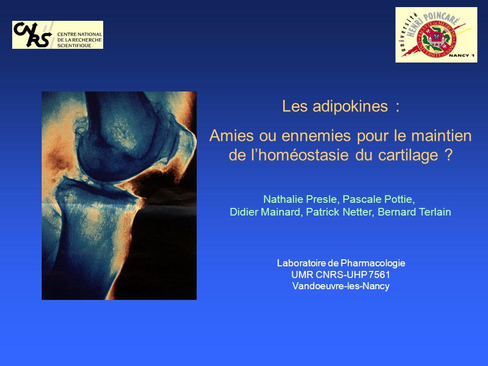 Les adipokines : Amies ou ennemies pour le maintien de lhoméostasie du cartilage ? Nathalie Presle, Pascale Pottie, Didier Mainard, Patrick Netter, Be