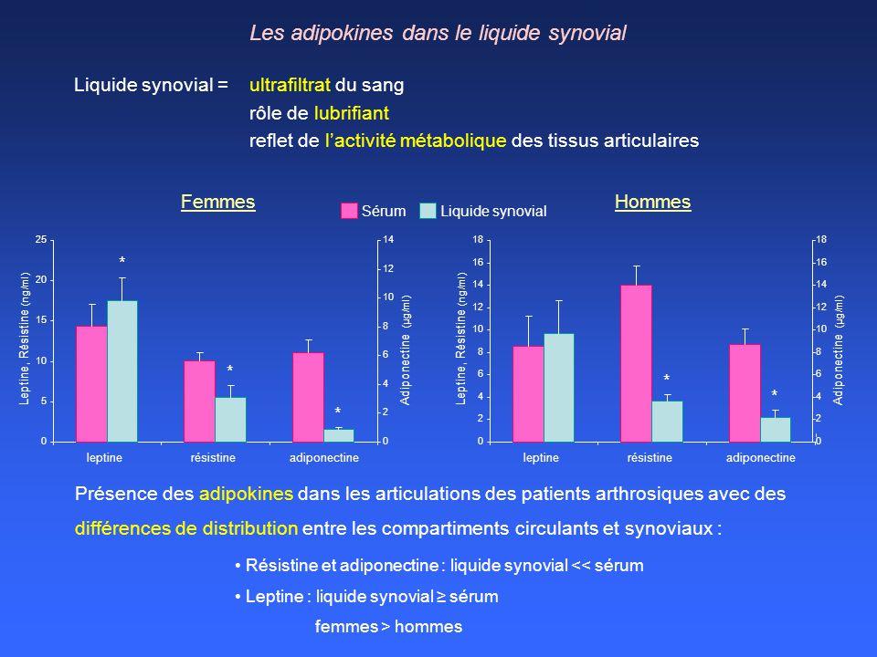 Les adipokines dans le liquide synovial Résistine et adiponectine : liquide synovial << sérum Leptine : liquide synovial sérum femmes > hommes Présenc