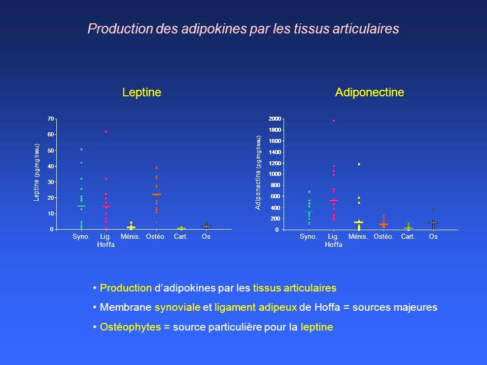 Production des adipokines par les tissus articulaires Production dadipokines par les tissus articulaires Membrane synoviale et ligament adipeux de Hof