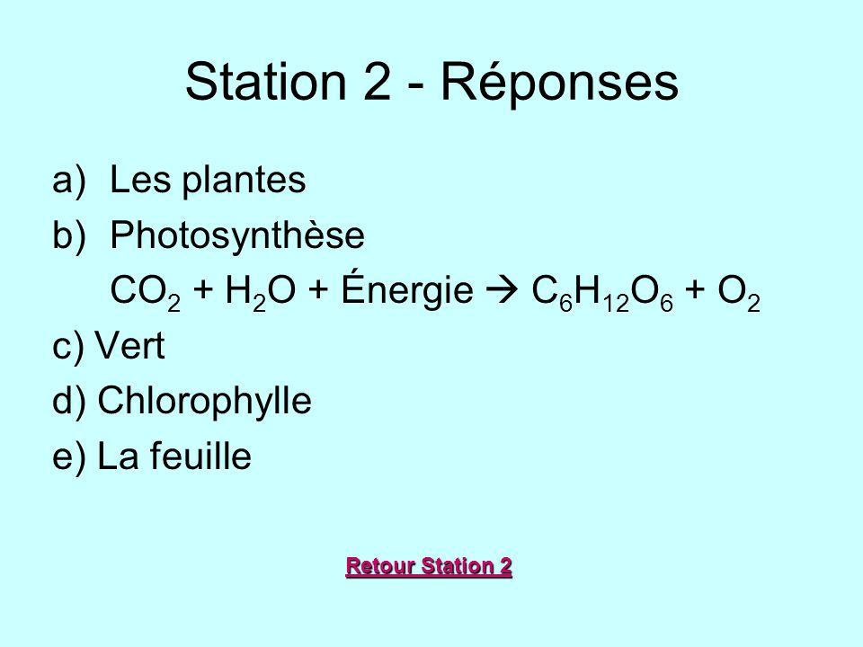 Station 2 - Réponses a)Les plantes b)Photosynthèse CO 2 + H 2 O + Énergie C 6 H 12 O 6 + O 2 c) Vert d) Chlorophylle e) La feuille Retour Station 2 Re