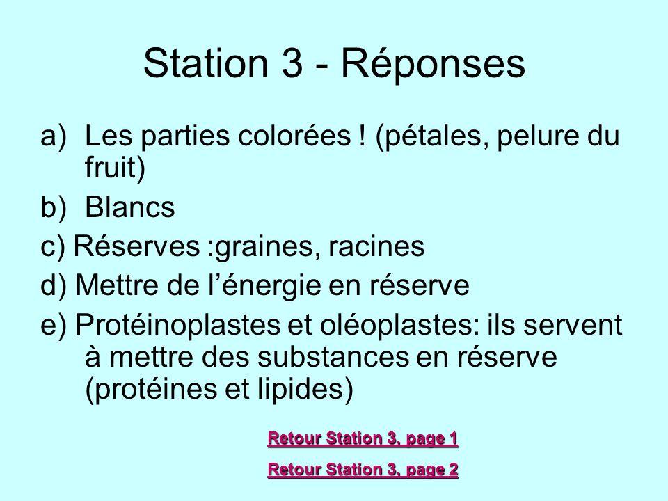 Station 3 - Réponses a)Les parties colorées ! (pétales, pelure du fruit) b)Blancs c) Réserves :graines, racines d) Mettre de lénergie en réserve e) Pr