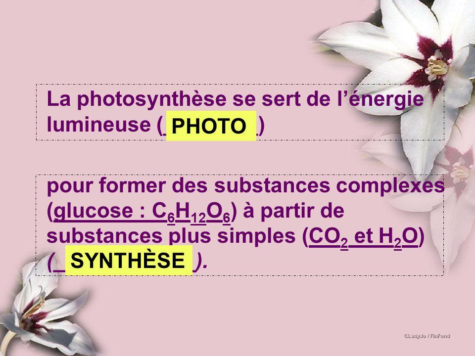 La photosynthèse se sert de lénergie lumineuse (________) pour former des substances complexes (glucose : C 6 H 12 O 6 ) à partir de substances plus s