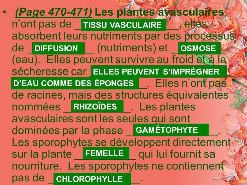 (Page 470-471) Les plantes avasculaires nont pas de _________________, elles absorbent leurs nutriments par des processus de ___________ (nutriments)