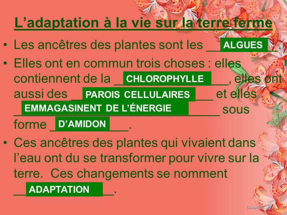 Ladaptation à la vie sur la terre ferme Les ancêtres des plantes sont les __________. Elles ont en commun trois choses : elles contiennent de la _____