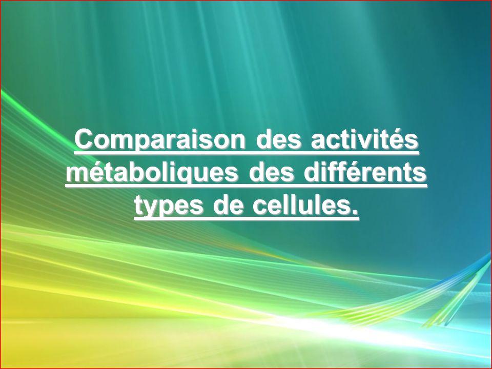 Comparaison des activités métaboliques des différents types de cellules.