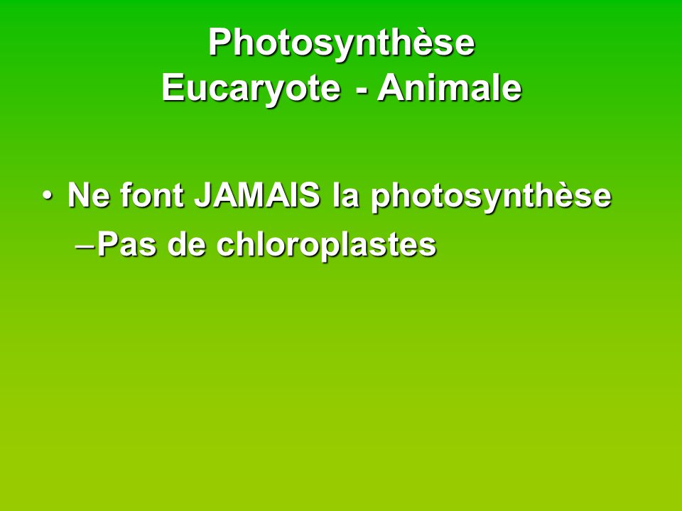 Photosynthèse Eucaryote - Végétale Tous les végétaux font la photosynthèseTous les végétaux font la photosynthèse Tous les végétaux ont des chloroplastesTous les végétaux ont des chloroplastes.