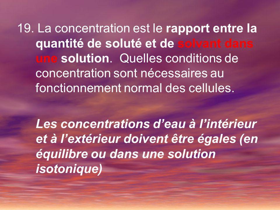 19. La concentration est le rapport entre la quantité de soluté et de solvant dans une solution. Quelles conditions de concentration sont nécessaires