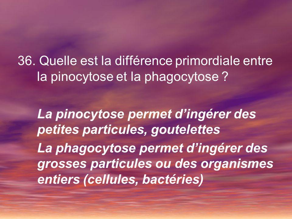 37.Quelle particule pénètre dans les cellules par endocytose par récepteur interposé .