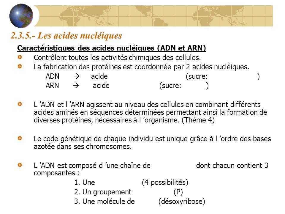 2.3.5.- Les acides nucléiques Caractéristiques des acides nucléiques (ADN et ARN) Contrôlent toutes les activités chimiques des cellules.