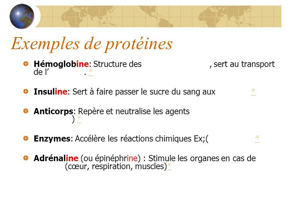 Exemples de protéines Hémoglobine: Structure des globules rouges, sert au transport de loxygène.