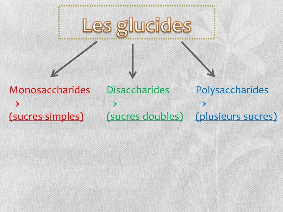 Monosaccharides (sucres simples) Disaccharides (sucres doubles) Polysaccharides (plusieurs sucres)