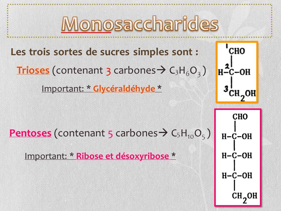 Les trois sortes de sucres simples sont : Important: * Glycéraldéhyde * Trioses (contenant 3 carbones C 3 H 6 O 3 ) Pentoses (contenant 5 carbones C 5
