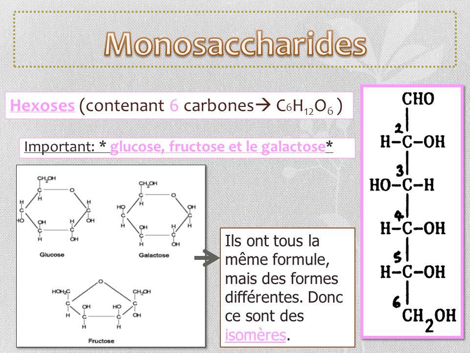 Hexoses (contenant 6 carbones C 6 H 12 O 6 ) Important: * glucose, fructose et le galactose* Ils ont tous la même formule, mais des formes différentes
