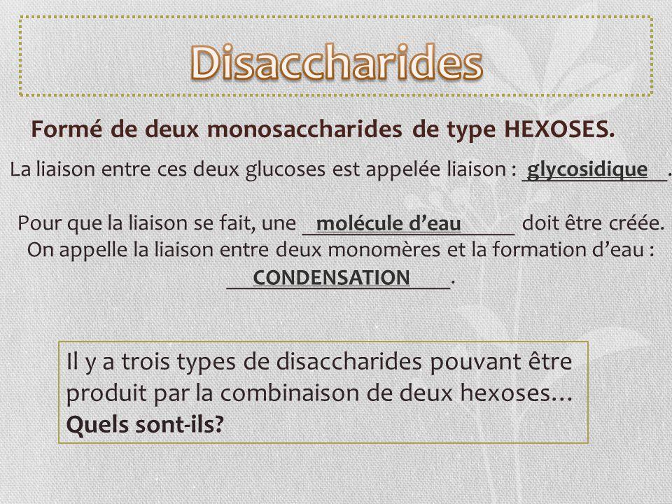 Formé de deux monosaccharides de type HEXOSES. La liaison entre ces deux glucoses est appelée liaison : _____________. Pour que la liaison se fait, un