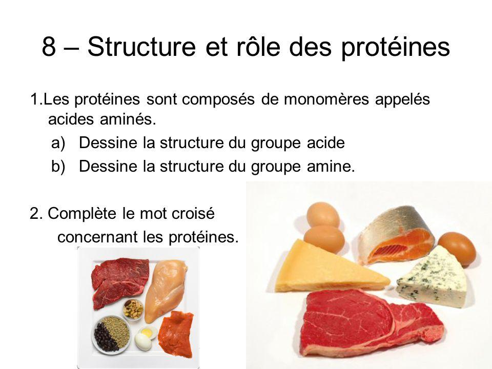 8 – Structure et rôle des protéines 1.Les protéines sont composés de monomères appelés acides aminés.