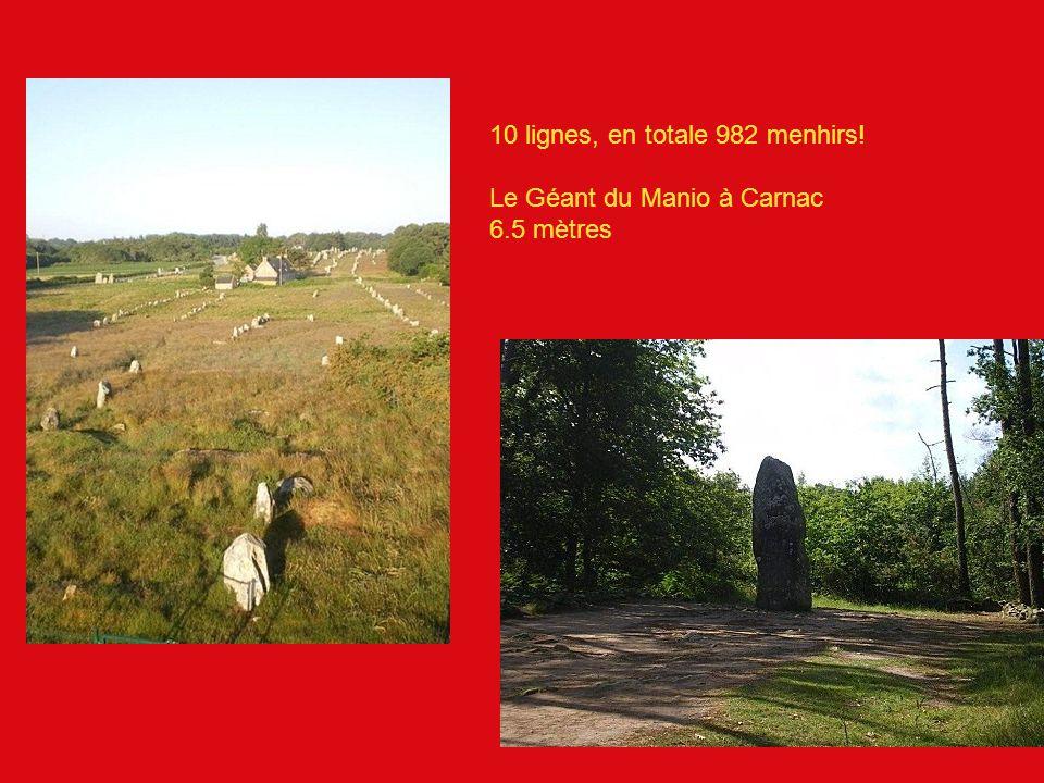 10 lignes, en totale 982 menhirs! Le Géant du Manio à Carnac 6.5 mètres