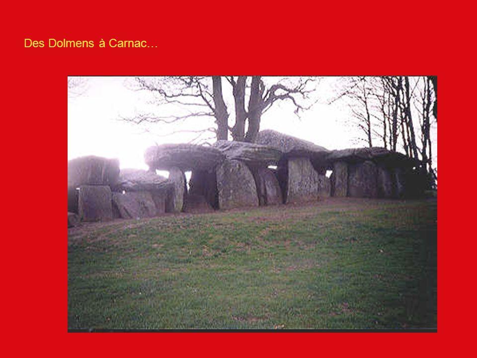 Pourquoi des dolmens.