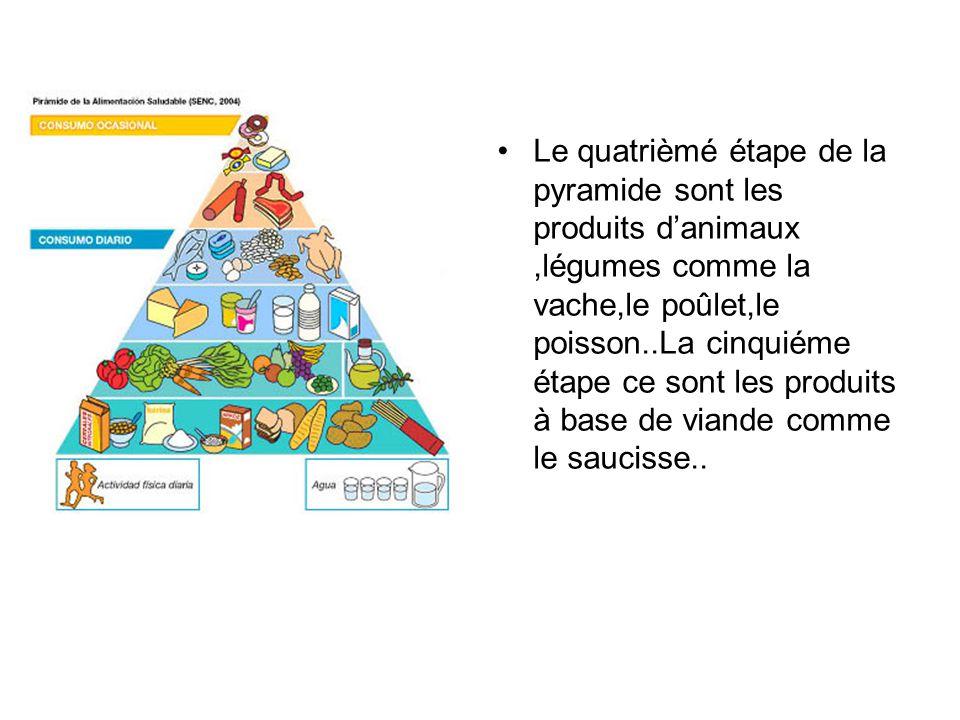 Le quatrièmé étape de la pyramide sont les produits danimaux,légumes comme la vache,le poûlet,le poisson..La cinquiéme étape ce sont les produits à ba
