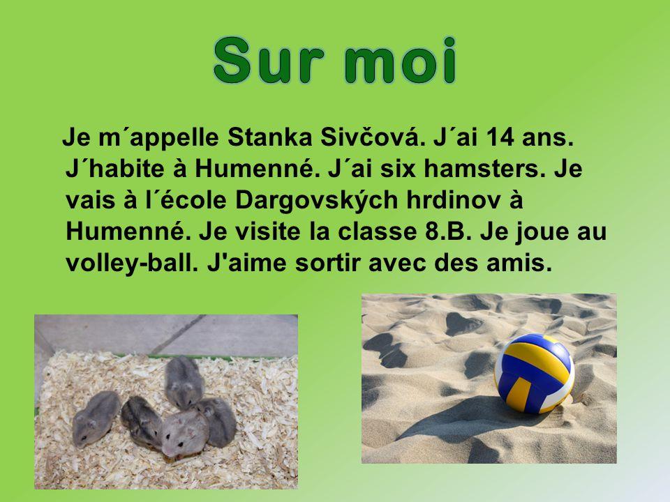 Je m´appelle Stanka Sivčová. J´ai 14 ans. J´habite à Humenné. J´ai six hamsters. Je vais à l´école Dargovských hrdinov à Humenné. Je visite la classe