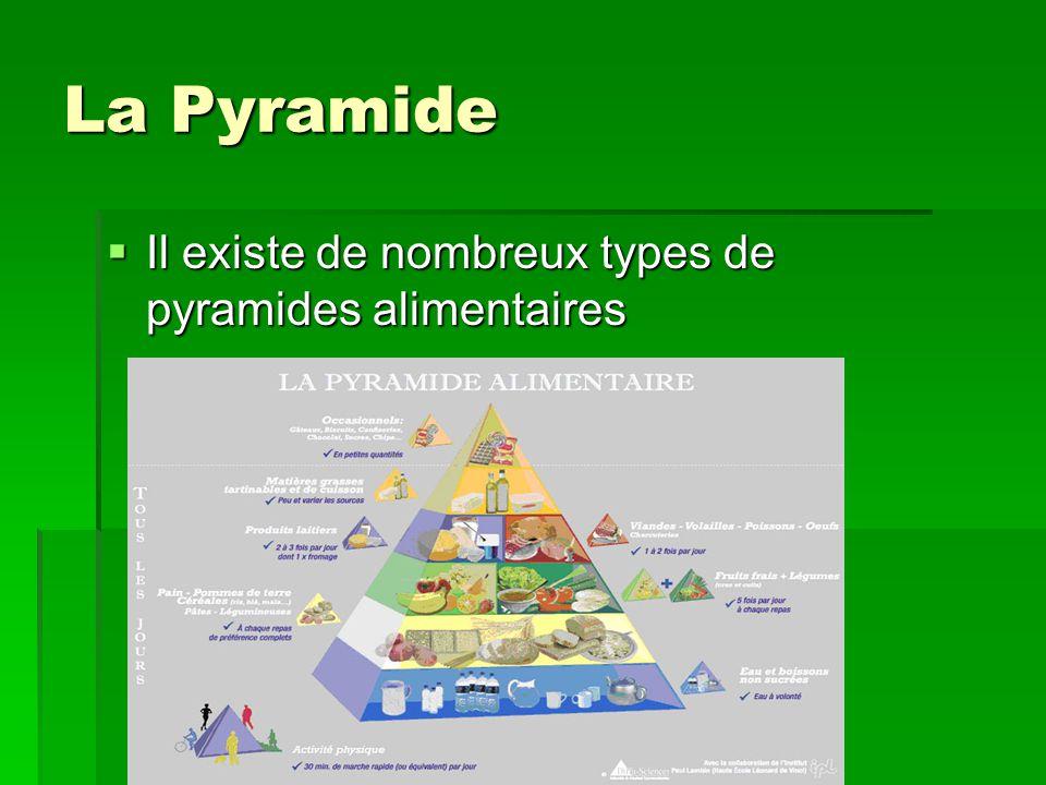 La Pyramide Il existe de nombreux types de pyramides alimentaires Il existe de nombreux types de pyramides alimentaires