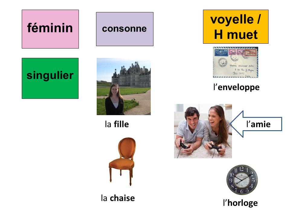 féminin consonne la fille la chaise lhorloge lamie singulier lenveloppe voyelle / H muet