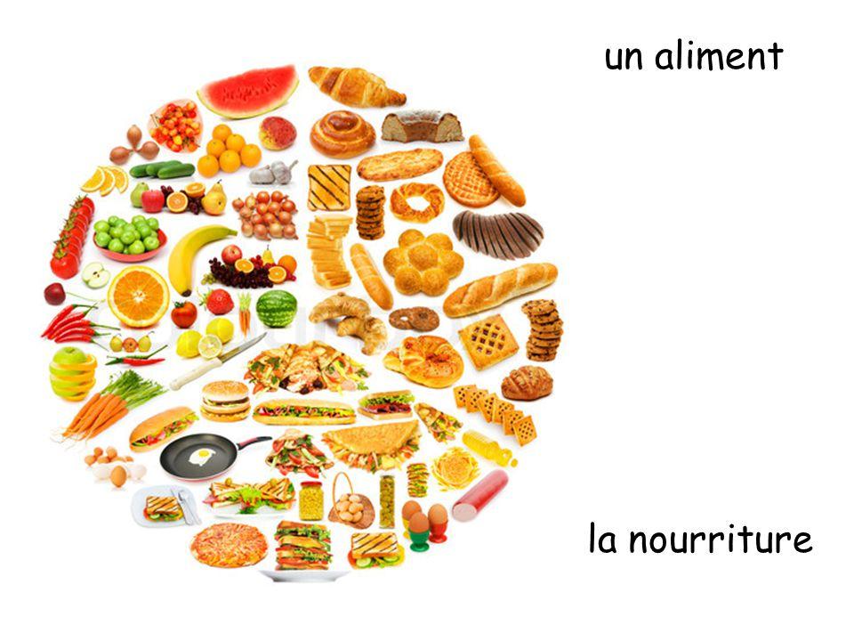 un aliment la nourriture
