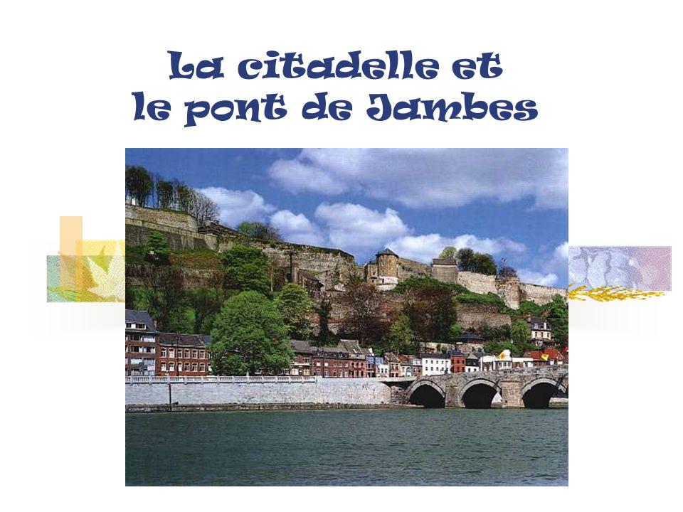 NAMUR centre vue du ciel Le « Grognon » Confluent de la Sambre et de la Meuse