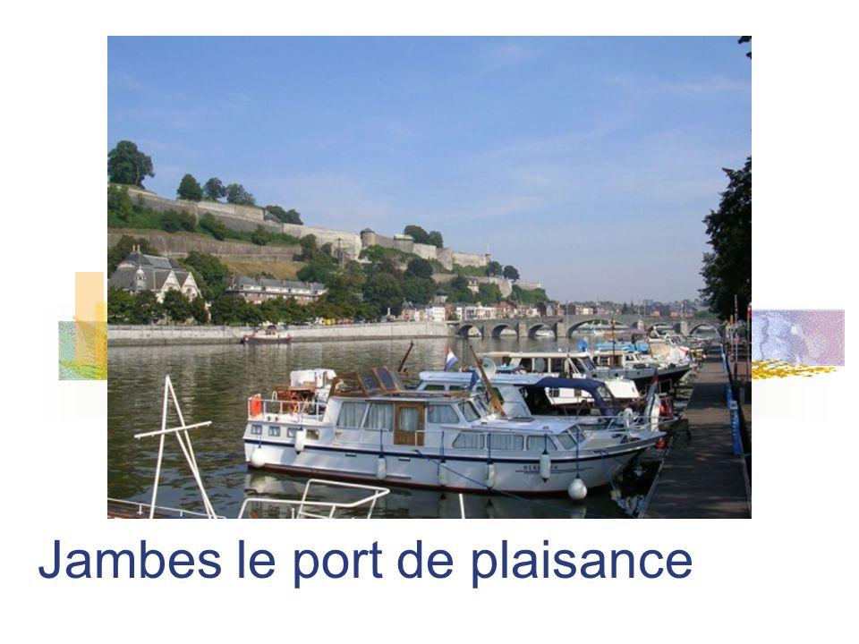 La Meuse, pont de Jambes et le confluent vus de la citadelle vers laval