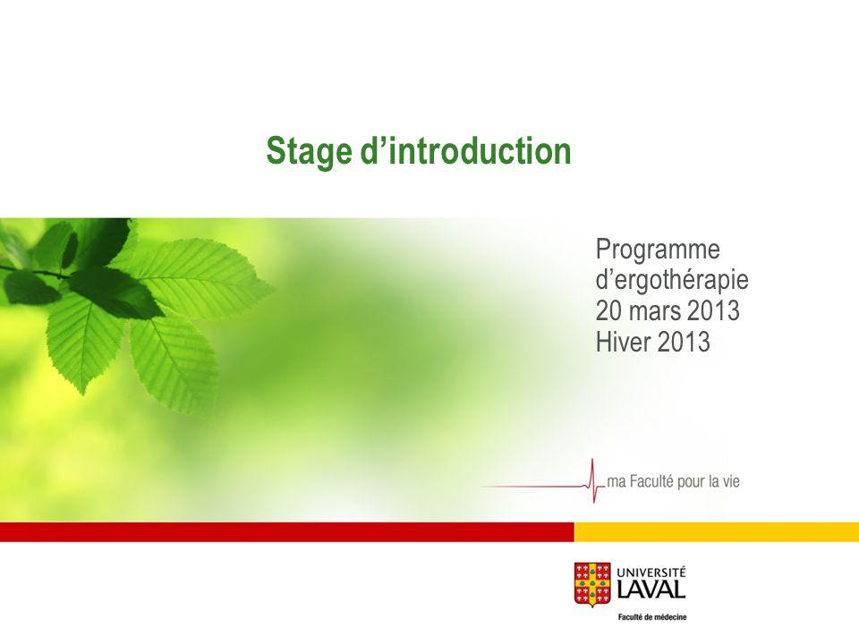 Stage dintroduction Programme dergothérapie 20 mars 2013 Hiver 2013