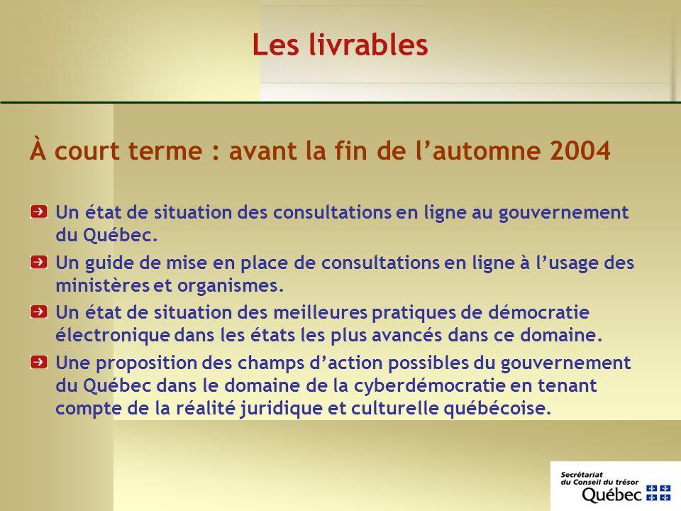 Les livrables À court terme : avant la fin de lautomne 2004 Un état de situation des consultations en ligne au gouvernement du Québec.