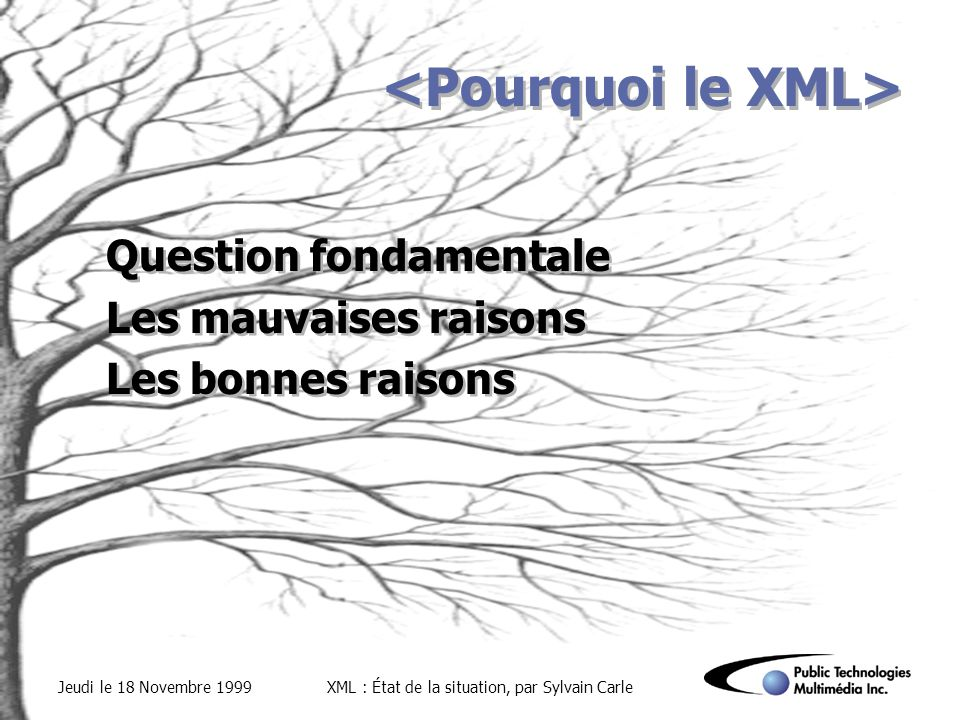 Jeudi le 18 Novembre 1999XML : État de la situation, par Sylvain Carle Question fondamentale Les mauvaises raisons Les bonnes raisons Question fondame