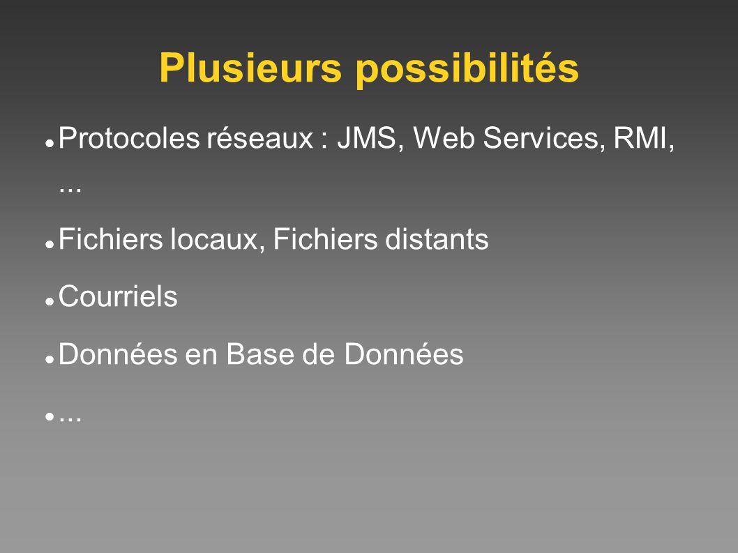 Plusieurs possibilités Protocoles réseaux : JMS, Web Services, RMI,... Fichiers locaux, Fichiers distants Courriels Données en Base de Données...