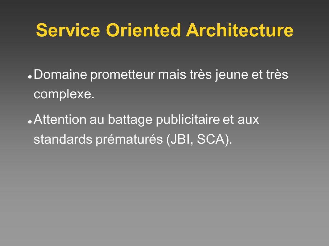 Service Oriented Architecture Domaine prometteur mais très jeune et très complexe. Attention au battage publicitaire et aux standards prématurés (JBI,