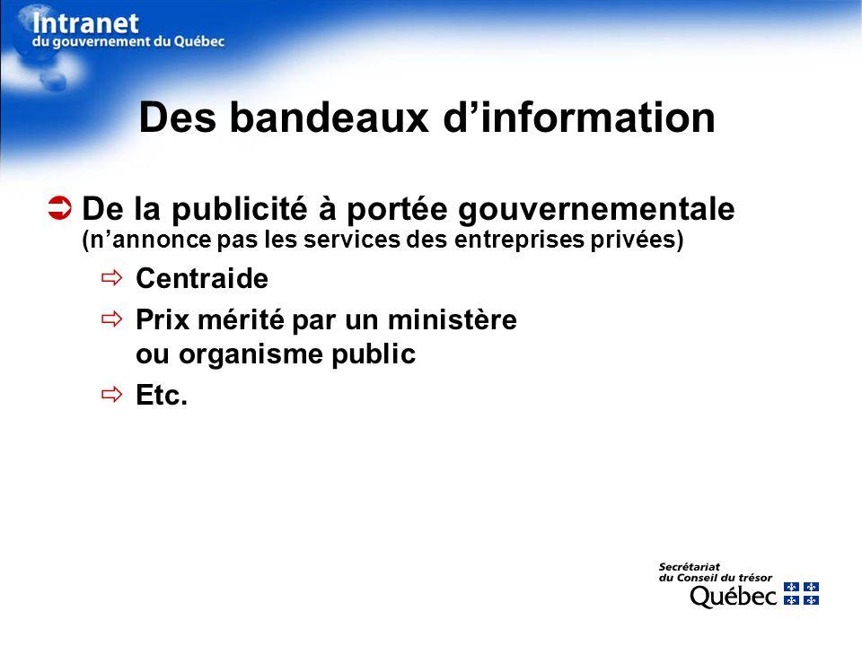 Des bandeaux dinformation De la publicité à portée gouvernementale (nannonce pas les services des entreprises privées) Centraide Prix mérité par un ministère ou organisme public Etc.