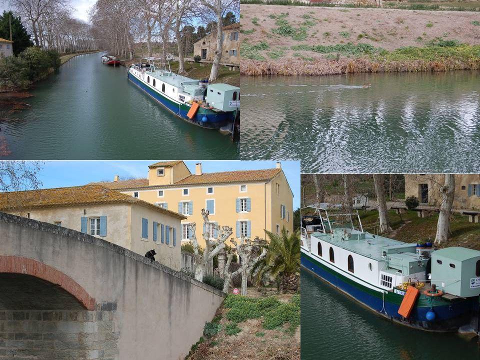 Le domaine de Régismont le Haut se trouve près du canal du Midi.